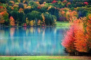 AutumnThanksGiving