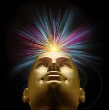 'Consciousness'