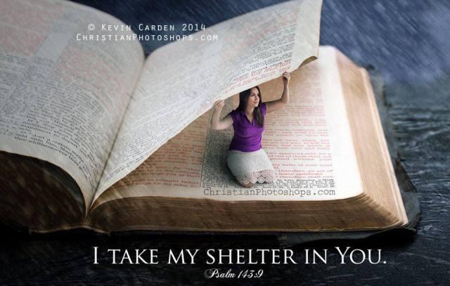 bible peace