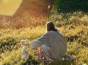 jesus-shepherd-lamb
