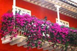 spanish-flowers-3